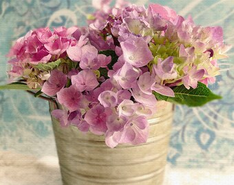 Purple Pink Hydrangea Photography, Garden Photography, Flower Photography, Hydrangea Photography, Spring Flowers, Summer Flowers, Garden