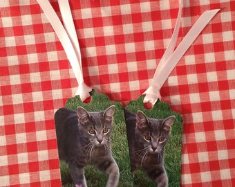 Gift Tags ~ Poppy D. Cat Gift Tags, Birthday Tag, Cat Lover Gift, Garden Kitty Tag with Satin Ribbons