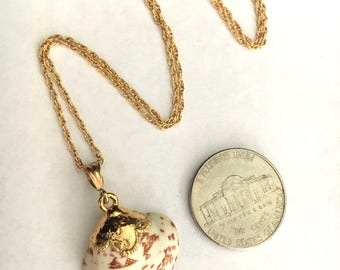 Hieroglyphic Venus Clam Shell 18kt Gold dipped necklace