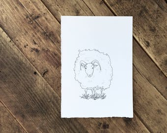 Original Ink Illustration of a Lake District Ram - Drawing - Gift -Sheep