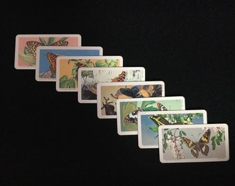 """Vintage 1965 National Wildlife Federation """"Butterflies of North America"""" Series 8 Collector Cards (TBxP1)"""
