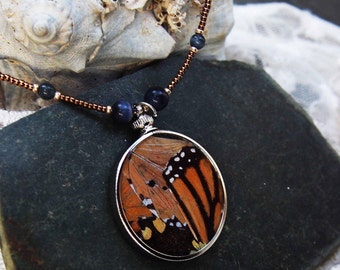 Real Butterfly Wing Beaded Necklace Curiosity Jewelry