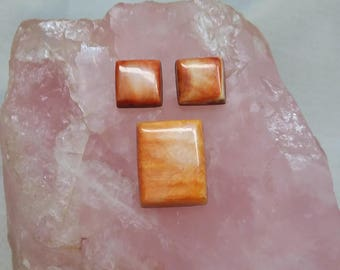 Orange and White Spiny Oyster Shell Square and Rectangle Cabochon Set/ backe