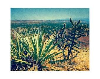 Large Landscape Photography, Southwestern Art, Large Cactus Photography, Vintage Desert Print, New Mexico Art Southwest Art Desert Love