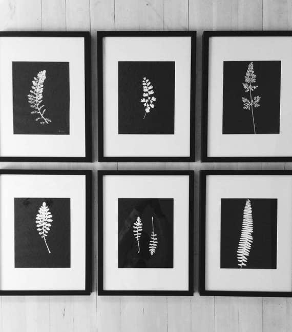 Original Botanical Prints, Set of 6 Framed, Hand pressed botanical, prints of plants, Black Botanicals, Christmas art, Christmas gift ideas