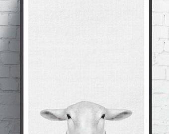 Animal Print, Nursery Farm Animal Decor, Black and White Baby Sheep Wall Art,  Printable Digital Download, Large Poster, Modern Art