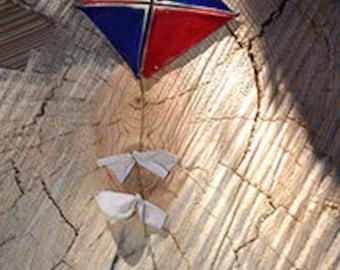 Blue & Red Kite Window Hang