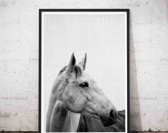 Horse Print, Modern Minimalist, Wall Art Photography, Minimalist Horse, Equestrian, Wild Horse Photo, Girls Room Decor, Digital Download