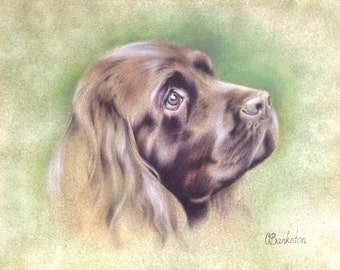 "Dog painting, pet art, Original watercolor painting ""Mercy"" 9x12"" on arches watercolor paper"