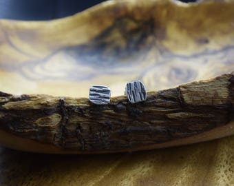 Rhytidome earrings, small