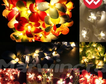 8 Colour Options / 35 Flowers Frangipani Fairy Lights String Home Accent Floral Party Patio Wedding Floor or Hanging Gift Home Decoration
