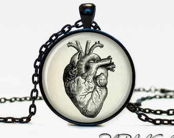 Anatomical heart pendant Anatomical heart necklace Anatomical heart jewelry