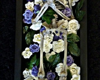 SUMMER SALE Replica Fetal Skeleton - Laid To Rest