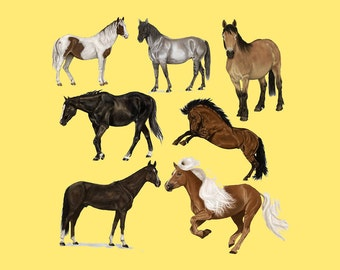 Clipart Horses, Clipart Horse, Horse Clipart, Horse Clip Art, Horse PNG, PNG Horses, Clip Art Horse, Clip Art Horses, Wild Horses
