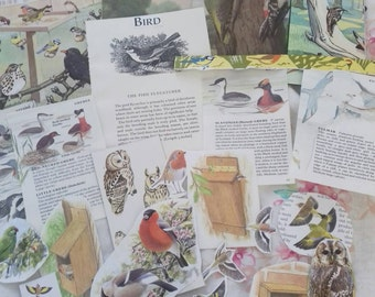 wild bird ephmera pack. snail mail, pen pals, journaling, travellers note book, collage.