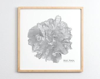 Mount Shasta California Topographic Map - Art Print