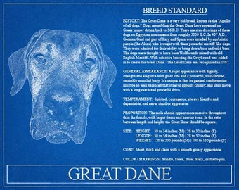 Great Dane Portrait / Great Dane Art / Great Dane Wall Art / Great Dane Print / Great Dane Gift