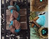 Birds Nest 100% cotton hand-dyed yarn