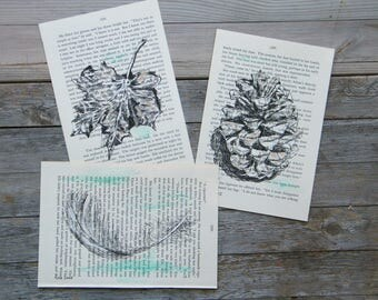 Book Art, Natural Pictures Set, Nature Prints, Recycled Paper, Set of 3, Dictionary Print, Hipster Room Decor, Housewarming Gift