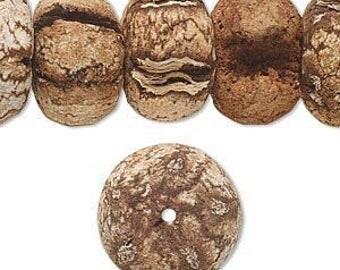 Mahogany Tree Beads,  Mahogany Seeds, Rondelle 17x10mm, 6 each, D982