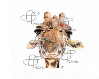 Gerry Giraffe By Amelia.T_Works