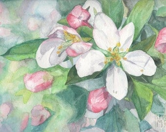 Apple Blossom Gouache Painting Print