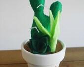Felt Succulent Arrangement, Felt Cactus Garden, Succulents and Cacti, Succulent Gifts