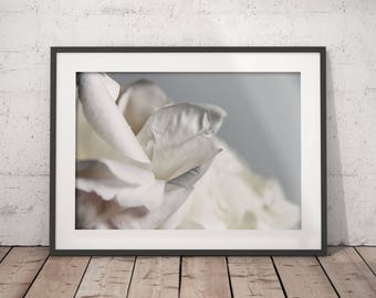 PEONIES FLOWER PRINT 03, printable, minimalist fine art photography, modern wall art