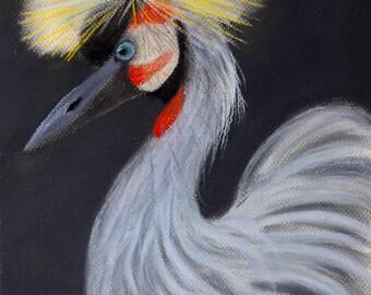 Balearica: Soft pastel painting