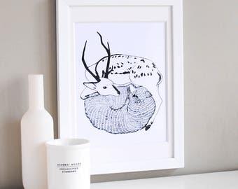 Deer & Wolf Illustration Print
