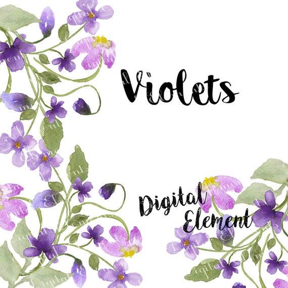 Watercolor Flower Clip-art, Lilac Violet Floral Clip-art