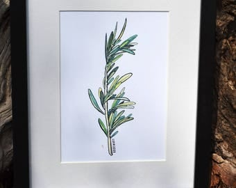 Rosemary Watercolor Print (Matted)