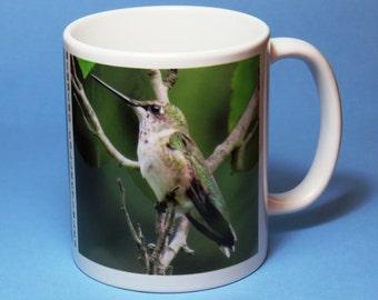 Hummingbird Coffee Mug I