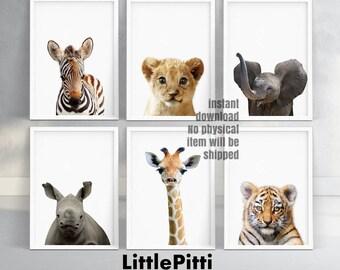 Safari nursery decor, safari animals, cute animals, zebra, lion, elephant, rhino, giraffe, tiger, jungle nursery print, set of 6 print kids
