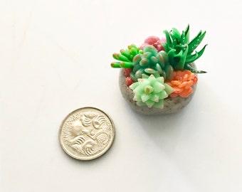 Miniature succulent charm