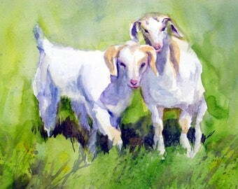 Kids - goats - baby goats - signed print - bonnie white - watercolor - b white