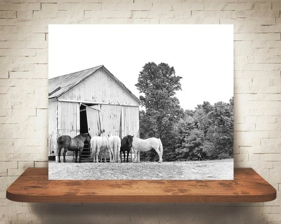 Horse Barn Photograph - Fine Art Print - Black & White Photo - Wall Art - Home Decor - Wall Decor - Equine Photography - Pictures of Horses
