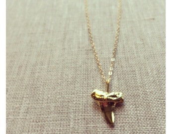 Shark tooth necklace-