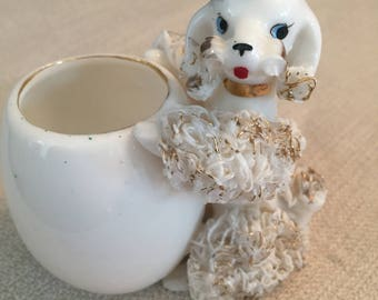 White Spaghetti Poodle with Cup