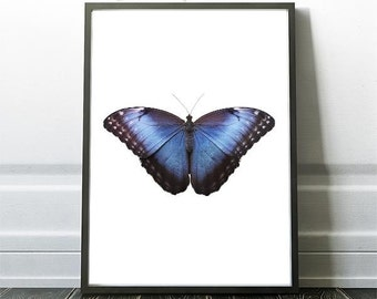 Butterfly Print,  Butterfly Art Prints, Printable Butterfly, Prints of Butterfly, Butterfly Wall Art Print, Butterfly Decor, Butterfly Art