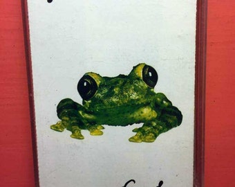 Silverchair Frogstomp Cassette Tape