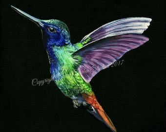 Greetings card - Hummingbird