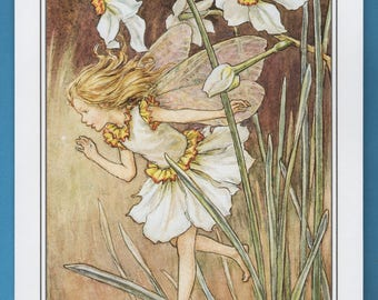 The Narcissus Flower Fairy,  Cicely Mary Barker Flower Fairy Book Plate Print