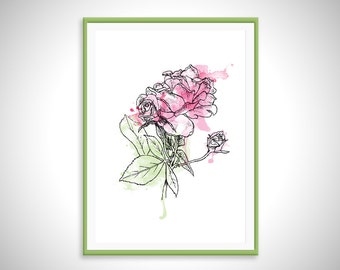 Watercolor Rose Print - Art Print - Hand Drawn Illustration
