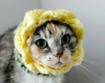 Pet Costume, Cat Hat, Hats for Cats, Dog Snood, Pet Hat, Flower, Sunflower, Snood, Cat Costume, Crochet,