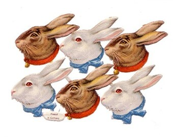 Victorian Rabbit Head