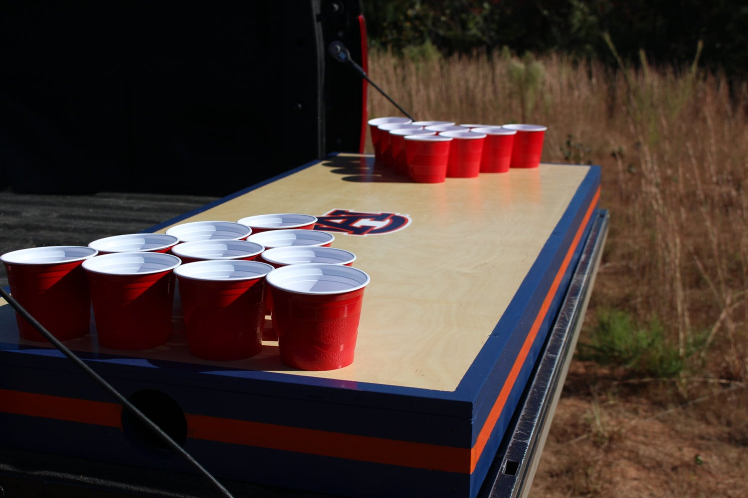 Homemade beer pong table - Truck Bed Beer Pong Table