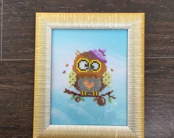 Pretty owlet
