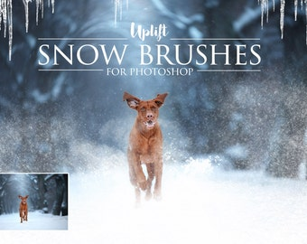 25 Snow Brushes for Photoshop