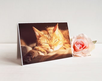 "Sleeping Cat Greeting Card (with envelope), Notecard, A7 5x7"", Bengal Kitty, Catnap 
